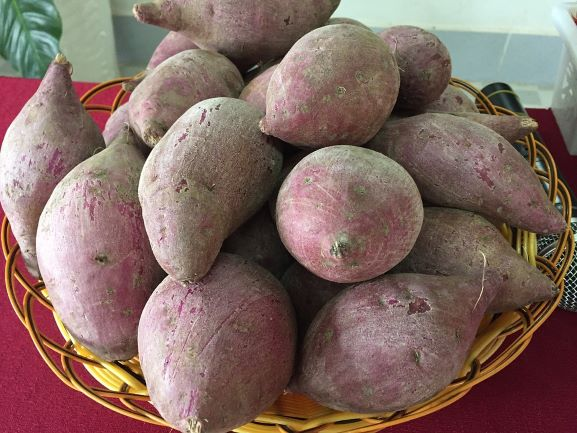 Sweet Potato in a basket are on the table